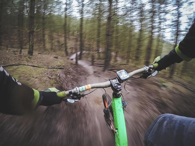 cyklista v lese.jpg